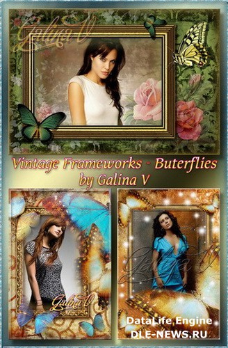Vintage photo frames Butterfly ( free 3 photo frame png, free download )