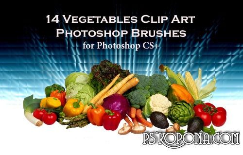 14 Vegetable ABR Photoshop Brushes free download