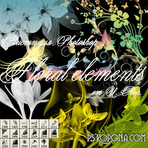 ABR Brushes for Photoshop - Floral elements free download