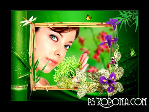 Flower Frame psd - Tropicana ( free photo frame psd, free download )