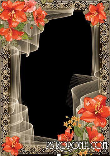 Romantic frame with orange hibiscus