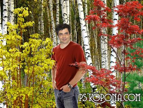 Шаблон PSD «Тёплая осень»