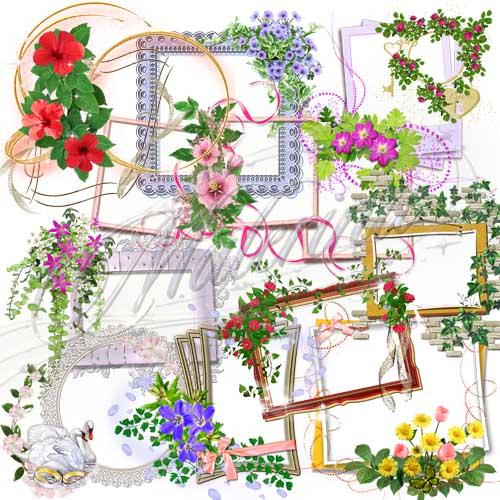 Клипарт - Цветочные вырезы для рамок  / Clip Art - Floral cutouts for the scope