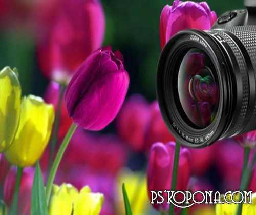 Floral Art in Photography