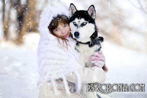 Child`s template for photo of the montage - The Girl with wolf