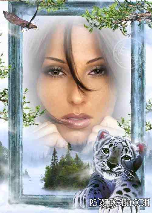 Photo frame - Snow leopard