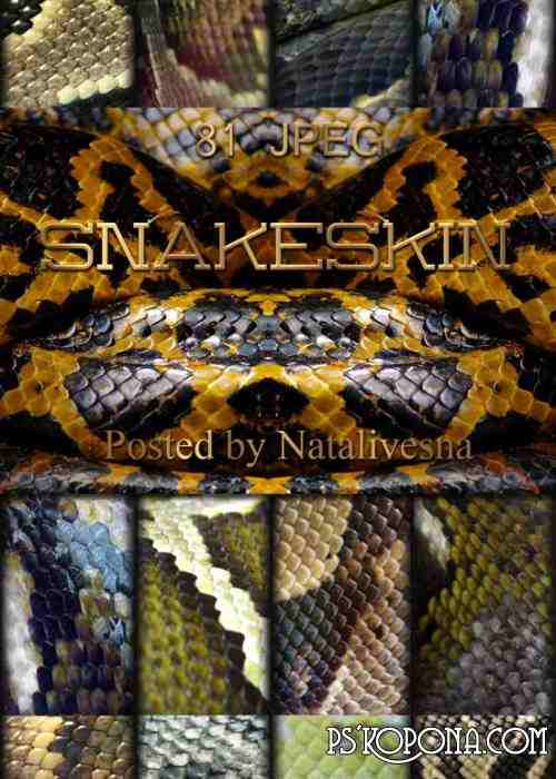 Textures, backgrounds - Snakeskin