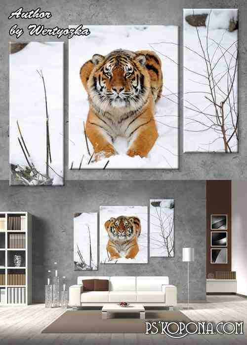 Multi-layered psd source triptych - Tiger in the winter woods