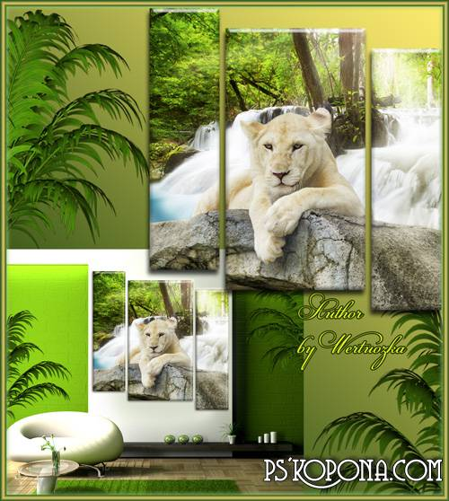 White Lion - Triptych in psd format