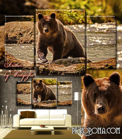 Triptych in psd format - Bear on the river