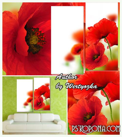 Red poppies, flowers of the field - Diptych in psd format
