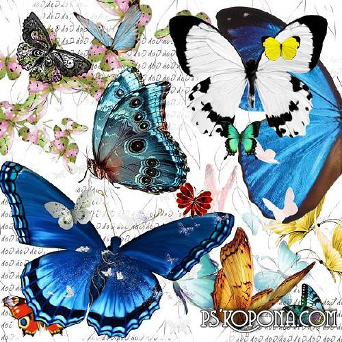 Clipart png + psd - Beautiful butterfly download