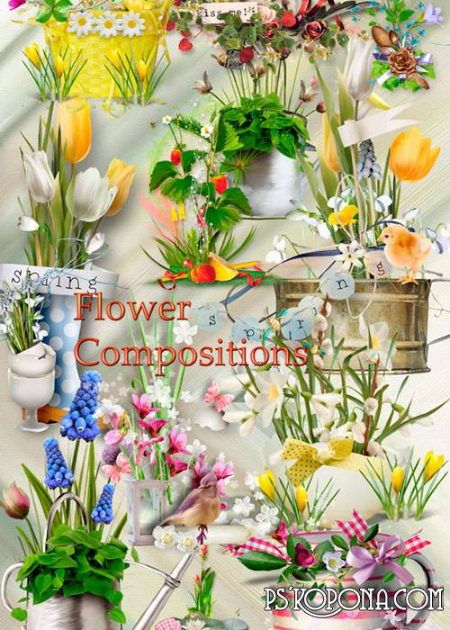 Clipart in PNG - Flower compositions