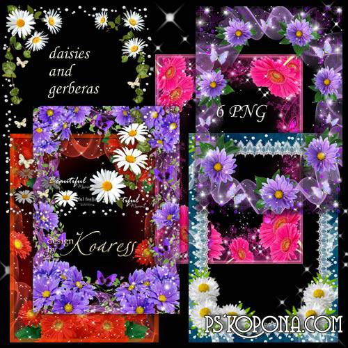 Set of floral bright frames for Photoshop - Gerberas and daisies