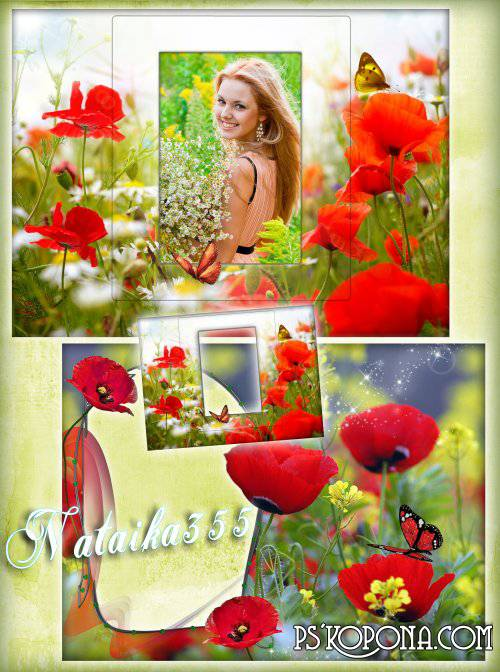 Framework for a photo - The scarlet sea of poppies