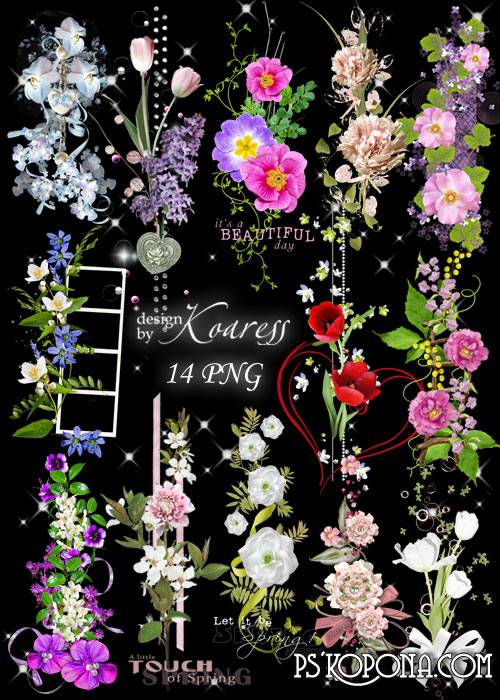 Set of png clusters on a transparent background - Floral fairy show