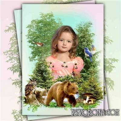Frame for Photoshop collage with nature free download - forest Songs