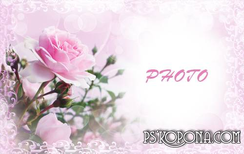 Photoframe - Pink Roses for you