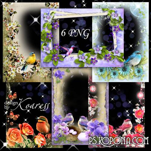 Set of romantic photo frames - Bird's singing in the spring day