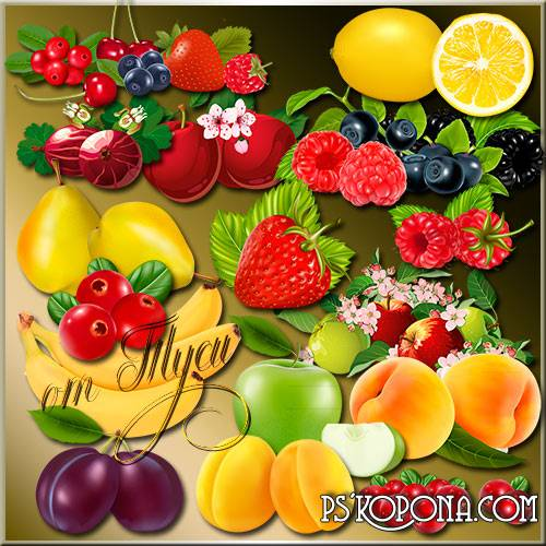 Clipart psd - Berries and fruit ( updated + psd )