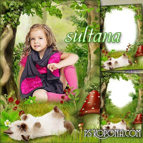 Summer Children frame for Photoshop - Little Kitten