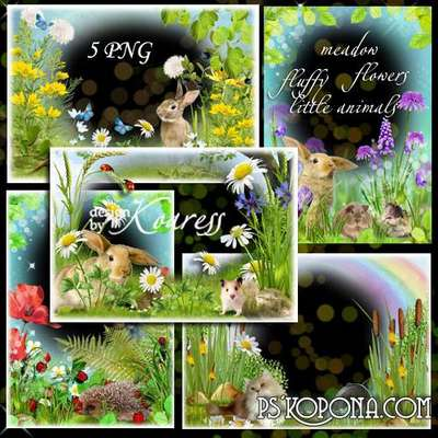 Set of photo frames for Photoshop with wild flowers and fluffy little animals