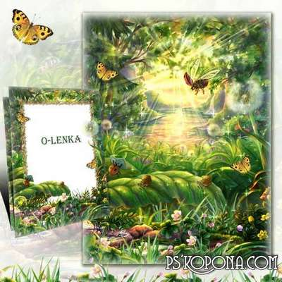 Nature frame for photoshop free download - On the forest glade