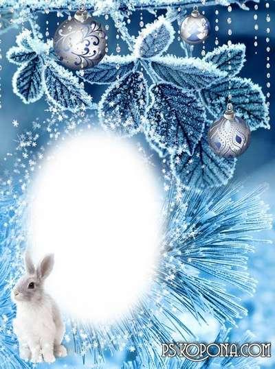 Winter frames - Snowball