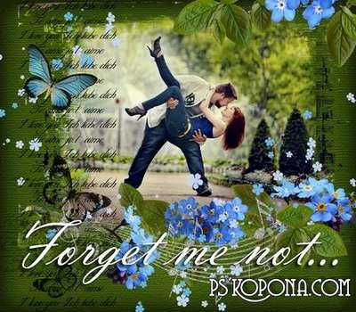 Forget me not - romantic framework