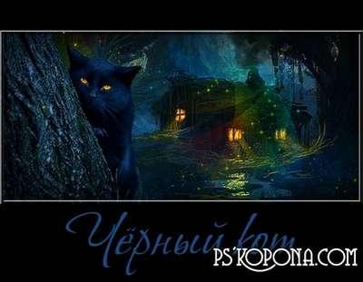 Black cat PNG Files Free download
