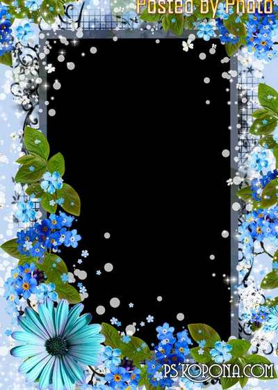 Flower frame for photo - forget-me-nots