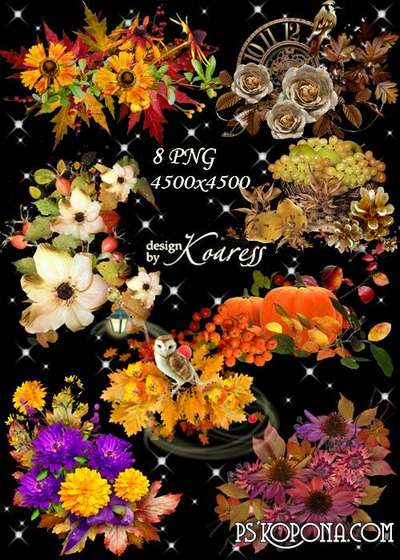 Set of autumn clusters png for design with flowers, leaves, berries, birds - Gifts of autumn png