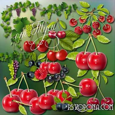 Clipart - Berry flavor and aroma