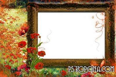 Collection photo frames png + frame psd free - My reflection