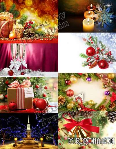 Christmas and New Year backgrounds – the Festival of a fir-tree and winter