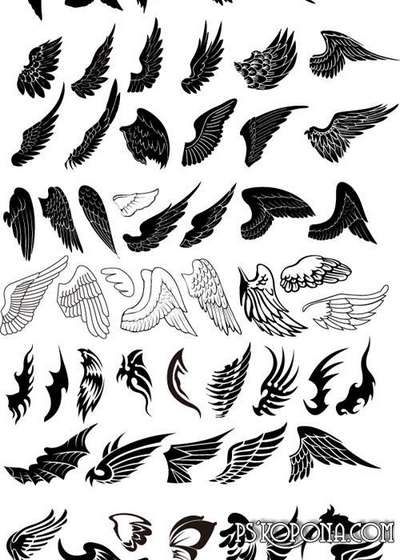 Different vector wings
