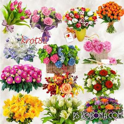 Selection Flowers png images on a transparent background download ( free 71 png,  updated + 17 png images )