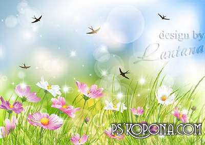 PSD source - Swallows return, flowery field