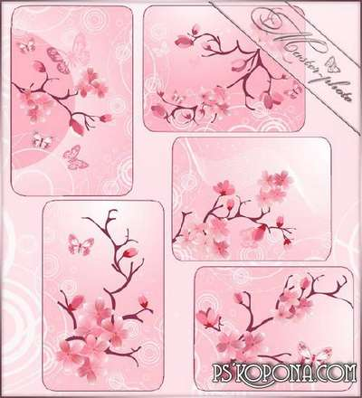 Set of spring multilayer source - Sakura
