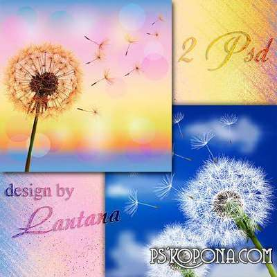 Layered PSD backgrounds for Photoshop - meadow with dandelions