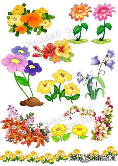 Free images flowers png