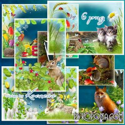 Children free frames for Photoshop - Grey bunny in the meadow