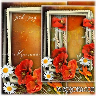PSD, PNG Frame for Photoshop with wildflowers - Colors of summer sunset