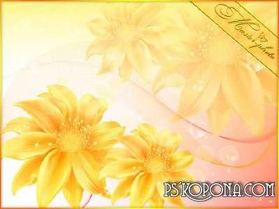 Multi-layer PSD template - Flutter summer 2