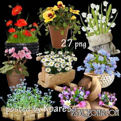 png images garden and potted plants in pots, vase flowers png, baskets of flowers - png clipart for design