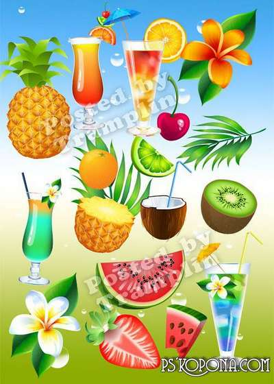 Summer clipart – Vegetables, fruit, drinks, flowers