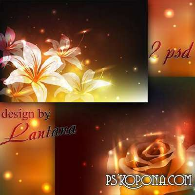 At night twinkling lilies and roses - Layered PSD backgrounds for design in Photoshop