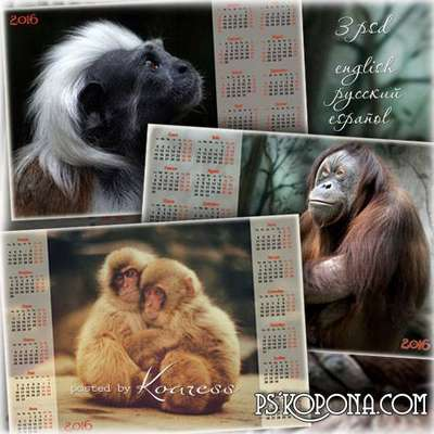 Set of wall calendars - Year of the Monkey