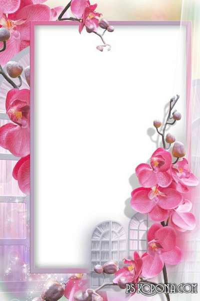 Photo frame - Delicate orchid. Transparent PNG Frame, PSD Layered ...