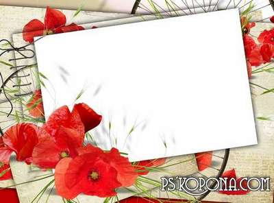 Photo frame - I collect in a field of red poppies